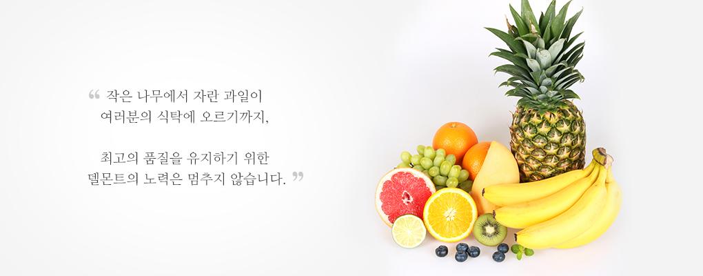 작은 나무에서 자란 과일이 여러분의 식탁에 오르기까지, 최고의 품질을 유지하기 위한 델몬트의 노력은 멈추지 않습니다.