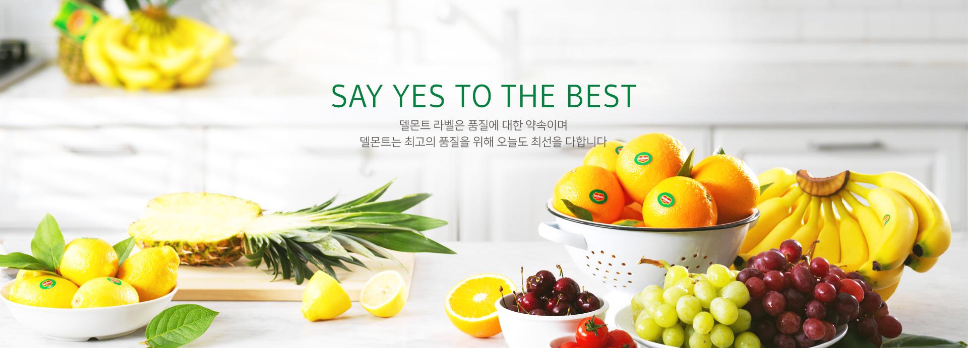 Say yes to the best 델몬트 라벨은 품질에 대한 약속이며 델몬트는 최고의 품질을 위해 오늘도 최선을 다합니다